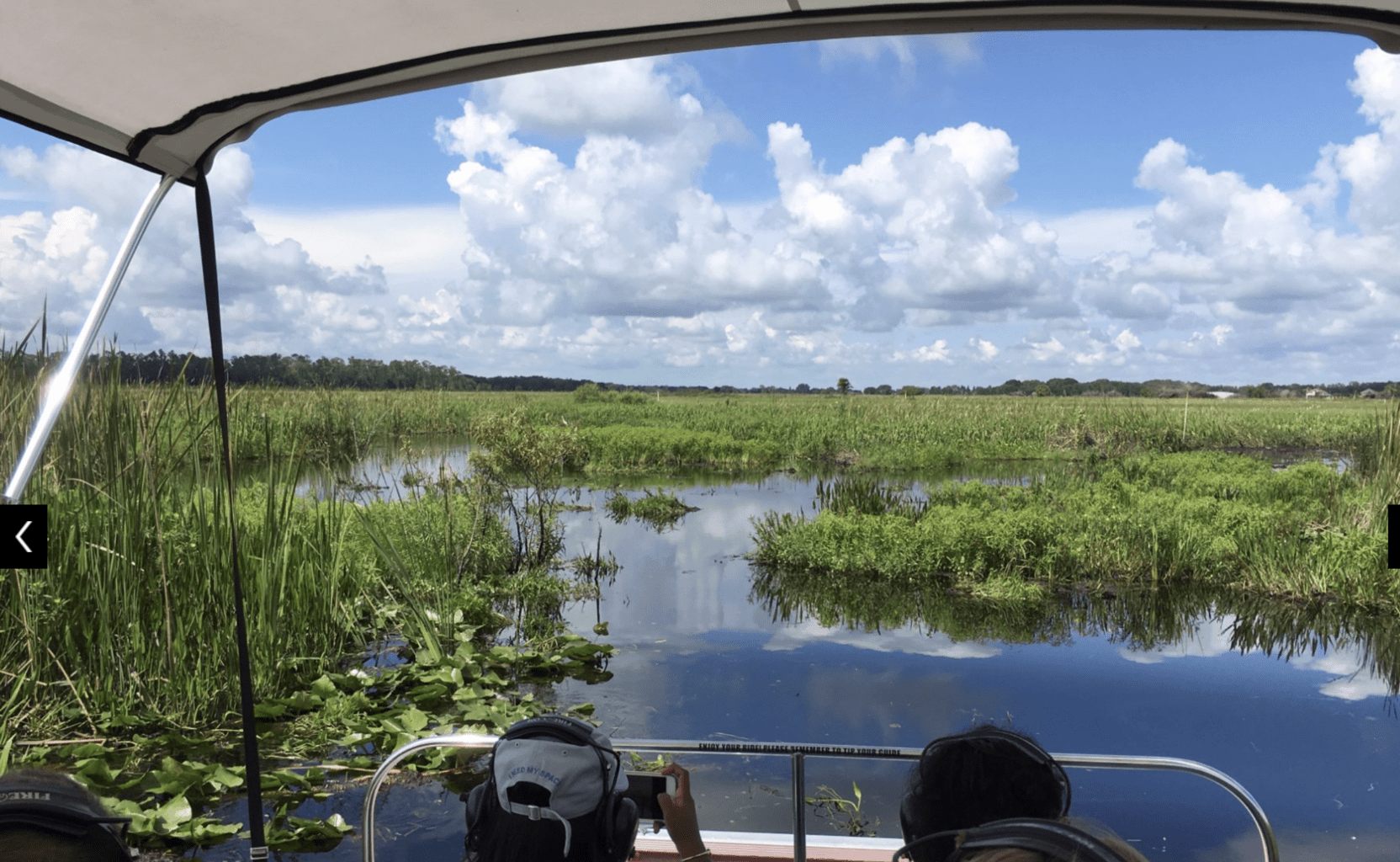 Florida Swamp Airboat Tou